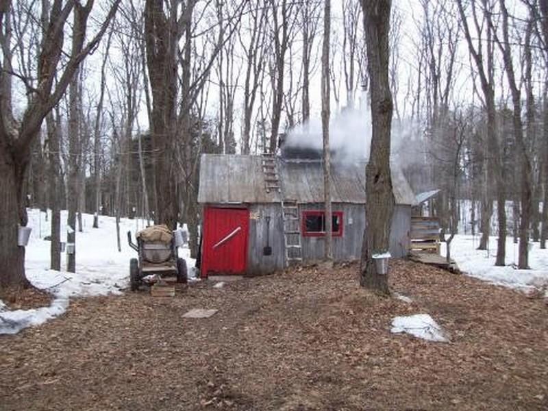 Tube cabane a sucre et cabane de bois - Collectionneur de sucre ...
