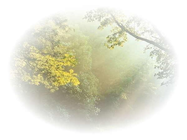 tube automne 2010
